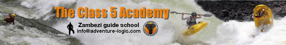 The Zambezi Academy